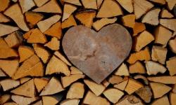 Holz mit Herz