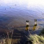 Im Moorsee