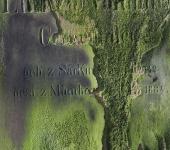 Friedhofslicht