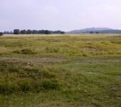Fröttmaninger Heide