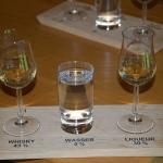 Whisky-Probe