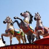 All die wilden Pferde …