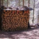 A Holz