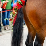 Pferdeschwanzschmuck