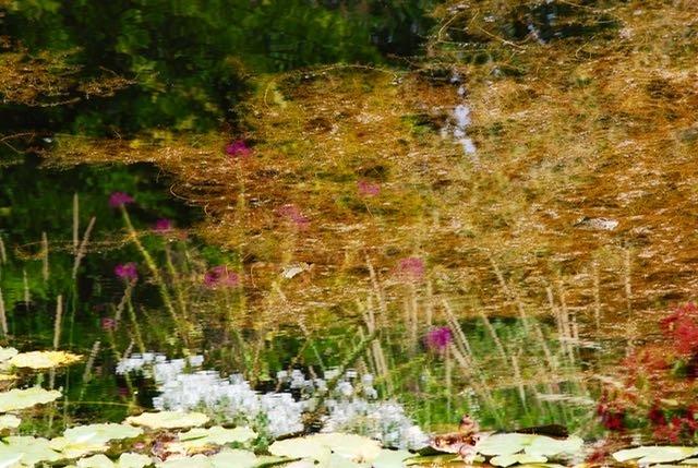 Herbst-Monet