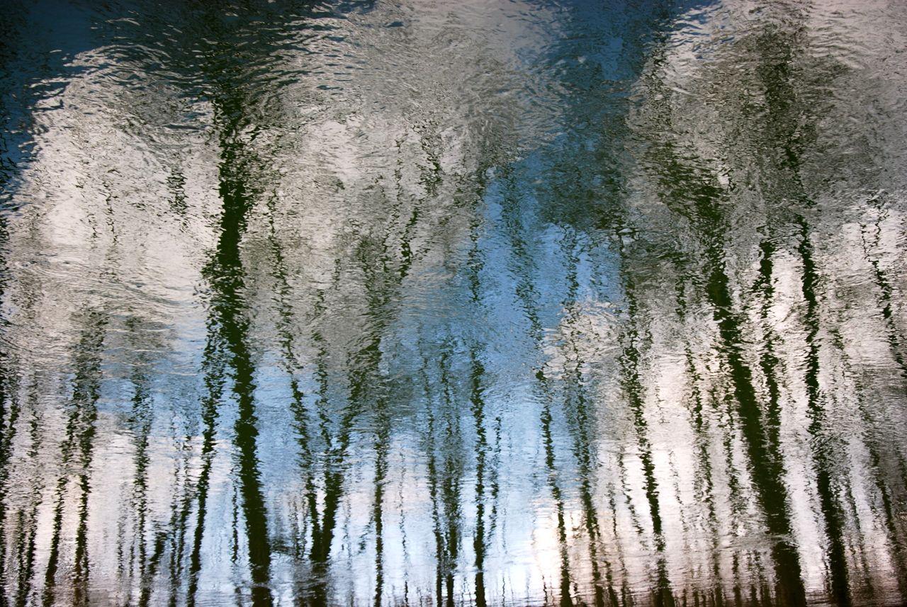 Bäume, Himmel, Wolken …